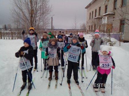 Лыжные соревнования в Бушевецкой школе