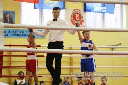 На турнире по боксу
