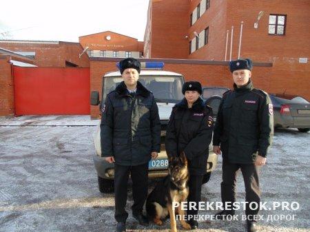 «Мохнатая служба», или Собаки на страже порядка и безопасности